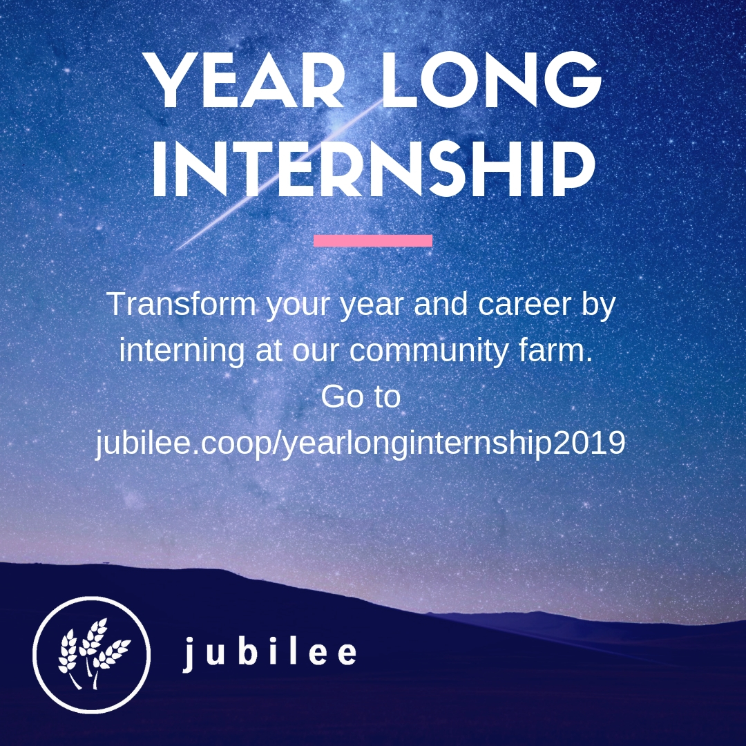 Year Long Internship 2019/2020 - Jubilee